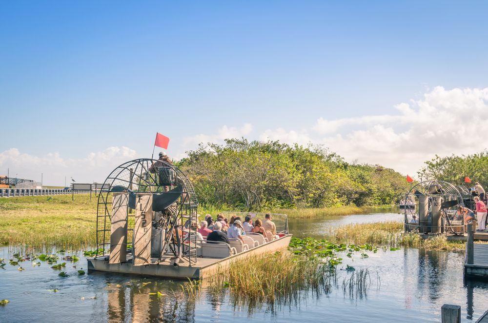 When's the Best Time to Go on an Airboat Ride? - Grape